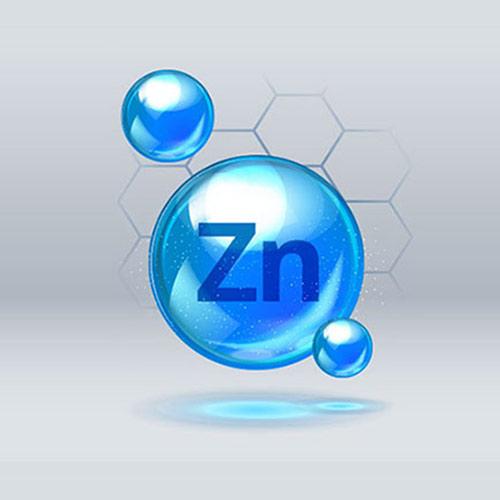 Gélules Cistus Incanus : zinc